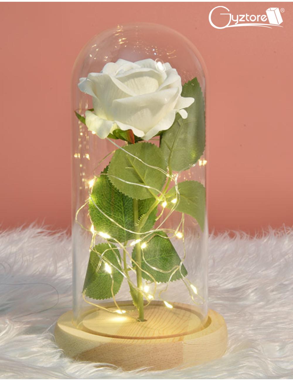 Rosas con domo de vidrio y luces LED